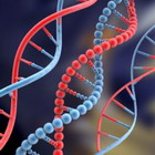 dna anti aging life extension strand1